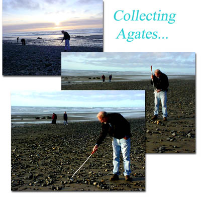 Author of AGATES OF THE PACIFIC COAST beach combing with the NEW shell & gem scoop!