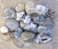 Sample photo of some spectacular rough  agates as found on the beach winter 1998-2000