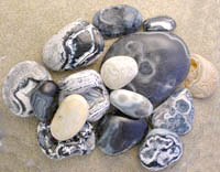 Sample Photo of Newport black agates as found on the beach winter 1998-2000